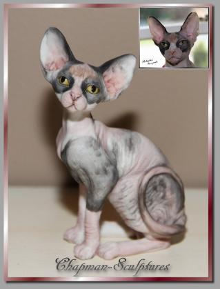 sphynx main page